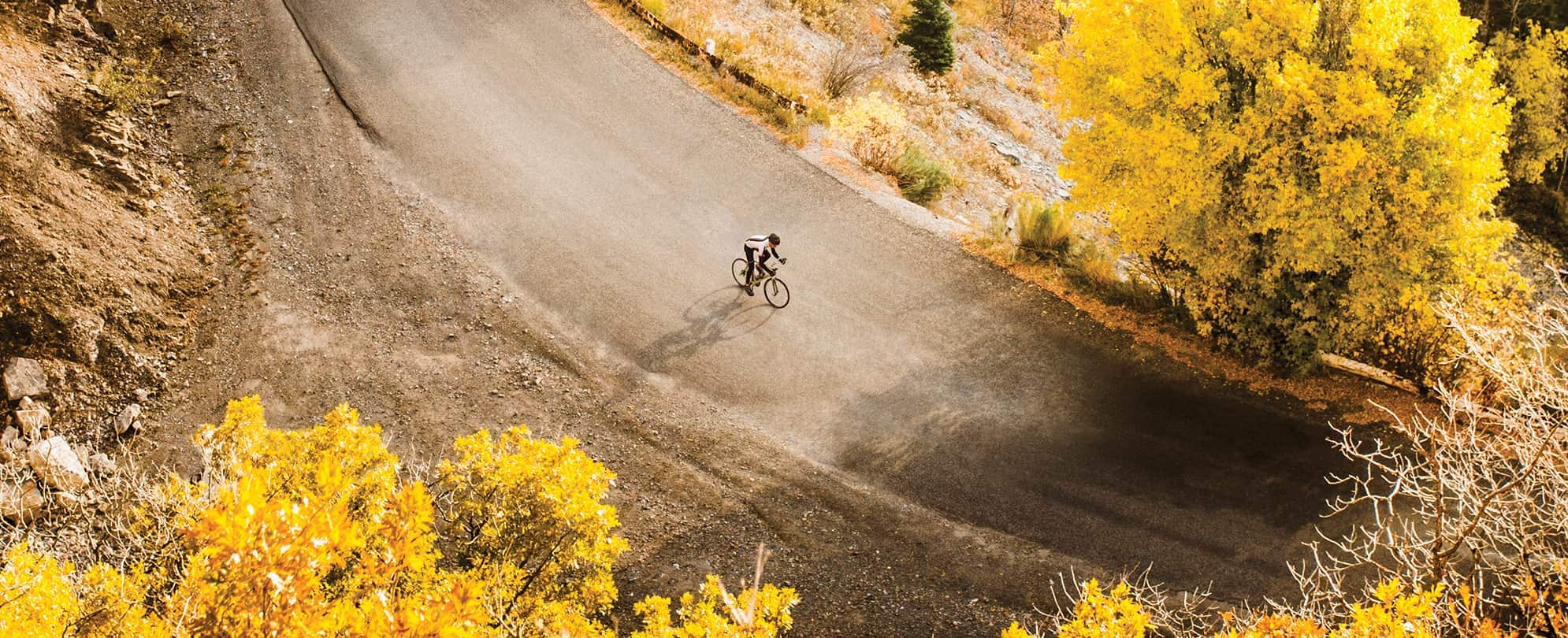 Biker riding down a paved path with lush fall trees